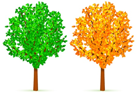 Trees with green and yellow leaves. Vector