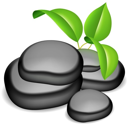 Group of black spa stones and green leaves.