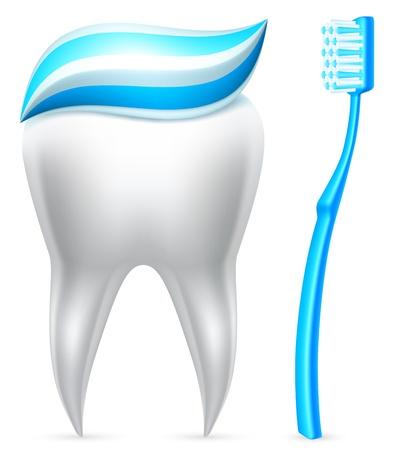 pasta dental: Diente con pasta de dientes y cepillo de dientes.