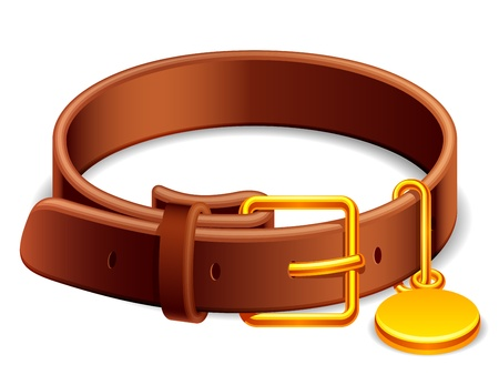 dog leash: Leather dog collar with a golden buckle. Illustration