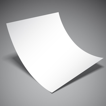 sheet of paper: Empty white paper sheet on grey background
