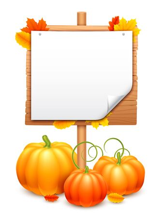 food illustration: Orange pumpkins, blank wooden signboard and autumn leaves