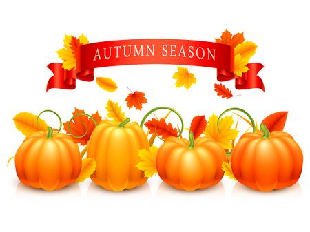 dynia: Pomarańczowe dynie, jesienne liście, trawa i czerwone wstążki