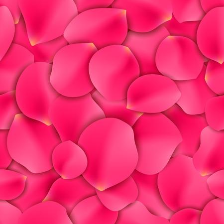 flower petals: Seamless pattern of pink rose flower petals