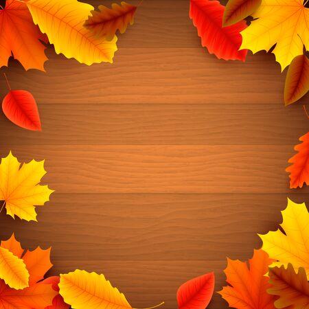 hojas antiguas: Hojas de otoño coloridas en el fondo de madera vieja