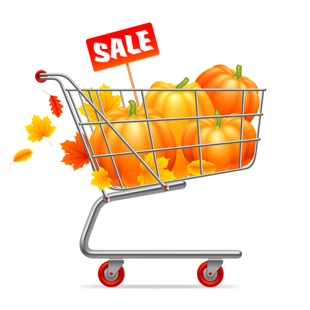 Shopping cart with pumpkins, autumn leaves, and sale advertisment