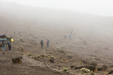 Track on Kilimanjaro on the Machame Route Whiskey. 4 day