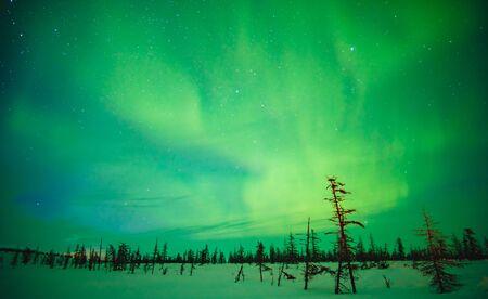 Cielo fabuloso en el Ártico ruso en invierno