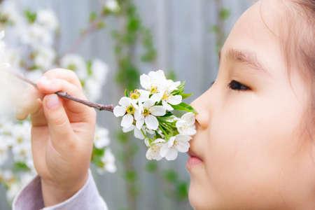 Close up portrait of an Asian girl smelling spring flowers Banco de Imagens