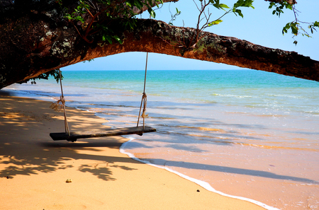 paradise bay: swing on a tree at the beach