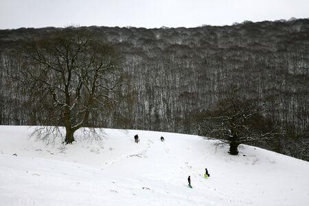 sledging: Slittino infront di legno, Gran Bretagna. Archivio Fotografico
