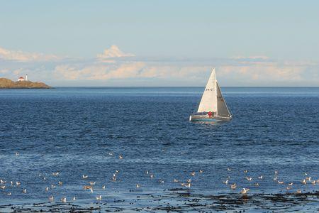 sailling: Sailling