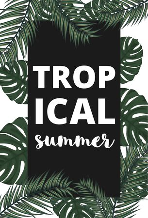 Summer vector banner with palm leaves. Tropical summer.