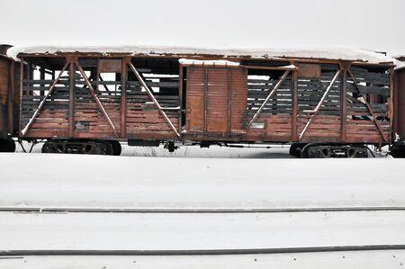 charred: Charred train  Stock Photo