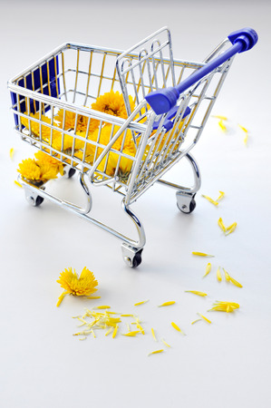shopping cart: Shopping cart with flowers.