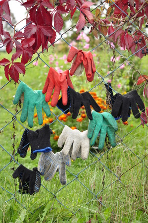 Gloves for working in the garden. Stock Photo