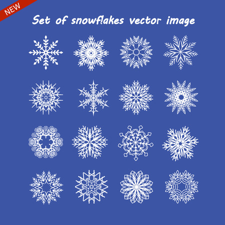 Set of snowflake vector image. White isolated icon