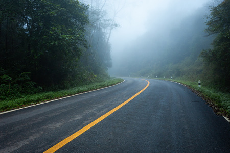 Road in with nature forest and foggy road of Rain forest