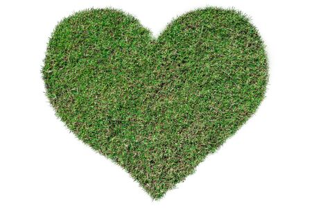 Heart-shaped green grass growing on Isolated on white.Love concept Stock fotó