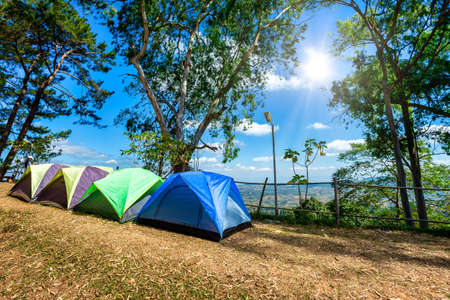 Tourist holiday in forest summer camp among meadow on Mountain,recreation and outdoor concept Standard-Bild