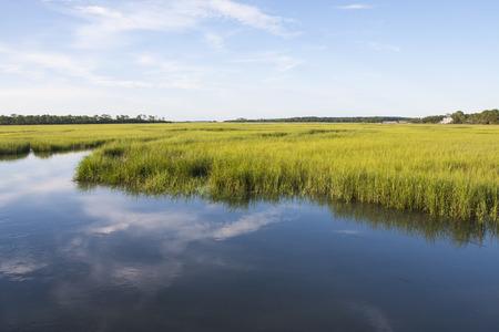Fripp 섬, 사우스 캐롤라이나에서 소금 습지 풍경