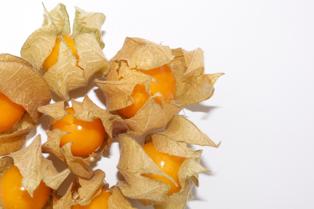 directly above: Closeup of physalis on white background taken from directly above. Stock Photo