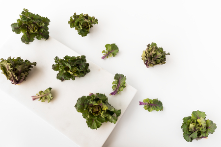 Kalettes, a new vegetable, a British-bred cross between Brussels sprouts and kale, on a white marble board and background. 版權商用圖片