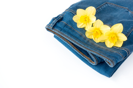 multiple: Blue denim jeans with three beautiful narcissus flowers in the pocket with copy space.