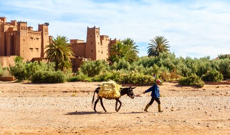 Ait Benhaddou, Morocco - May 11, 2017: Moroccan Berber man walking past the ancient village of Ait Benhaddou with his donkey loaded with hay.