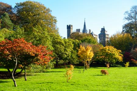 Bute Park z nasłonecznionymi drzewami w żywych kolorach jesieni i zamkiem Cardiff w tle.