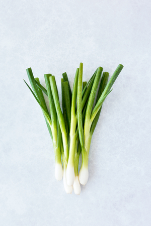 Spring onions with water drops on a modern DIY background in light grey with hints of blue and purple pattern.