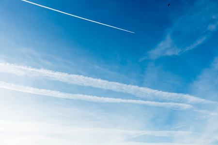 Blue sky covered with chemtrails and a plane flying, leaving a contrail, chemtrail.