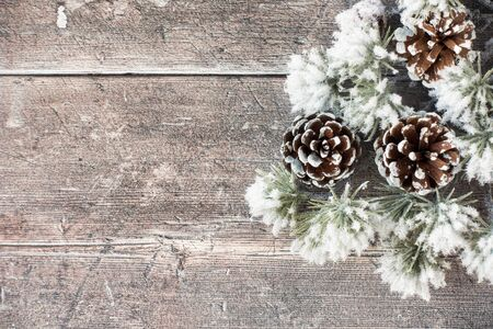 Snow covered atlas cedar branch and pine cones on brown rustic wood with copy space. Top view.