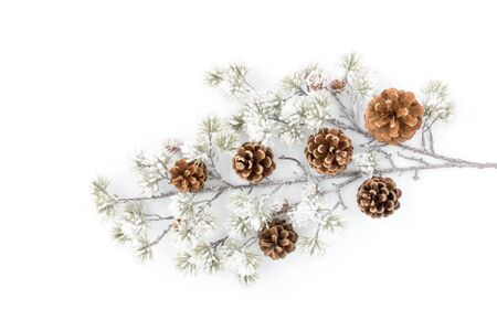 Snow covered evergreen branch with pine cones isolated over white background. 版權商用圖片