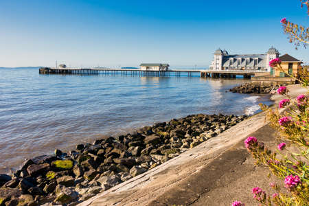 Penarth waterfront with flowers on a summer morning with Penarth Pier in the background.