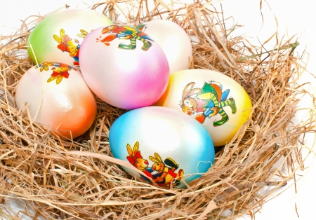 Colorful Easter eggs in a nest  on a white background,  photo