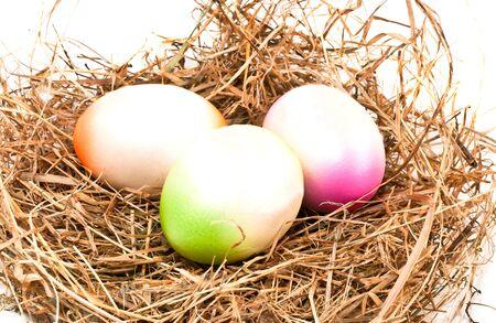 Nest full of colorful Easter Eggs