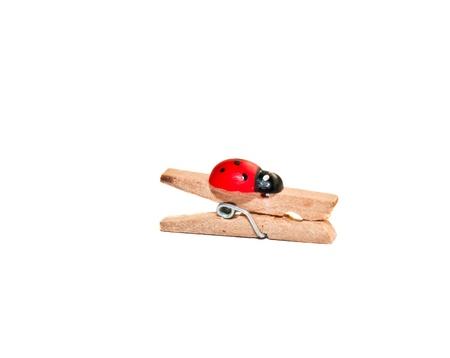 wooden clothespeg with a ladybug