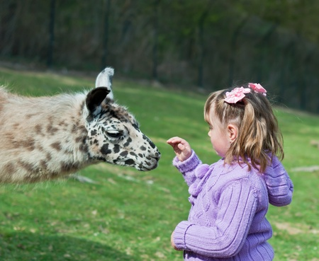 lama and Little Girl photo