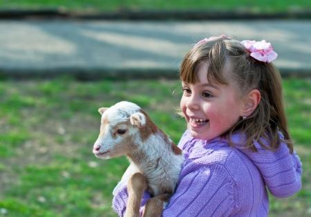 Pet lamb having a cuddle