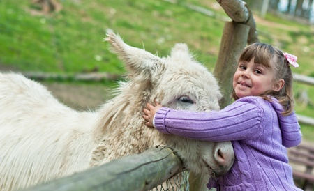 A 5 year old girl pets a donkey outside at the farm