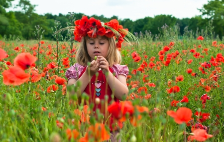 ber: Little girl in a wreath from poppies