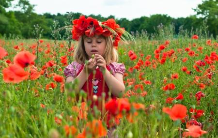 feld: Little girl in a wreath from poppies