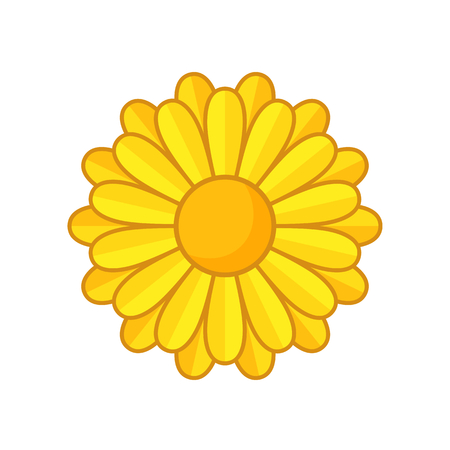 calendula: Simple illustration of yellow flower with contour. Separate bloom. Illustration
