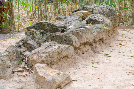 Petrified wood in the Phu Kradung formation at Phu Faek Forest ParkKalasin provinceThailand.