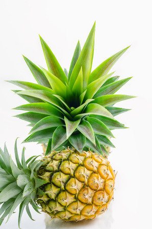 pineapple with leaves on white background.