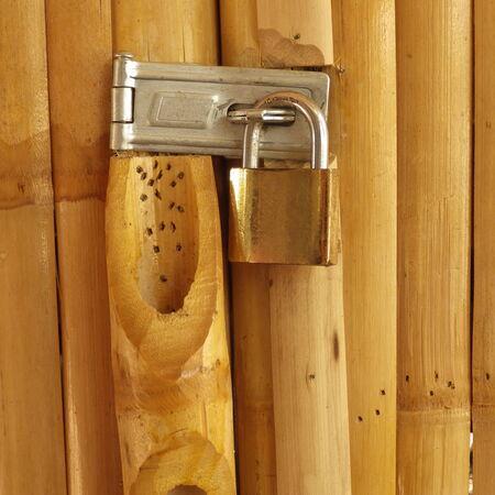 Serrure à clé la porte de bambou Banque d'images - 28037209