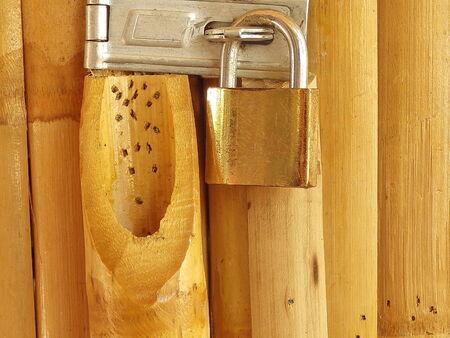 Serrure à clé la porte de bambou Banque d'images - 28118640