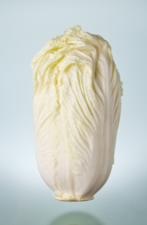 pollution free: Cabbage material