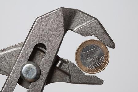 grasp: Euro in pincer grasp